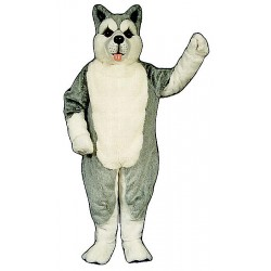 Husky Mascot Costume MM14-Z