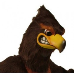 Hawks & Other Bird Mascot Costumes
