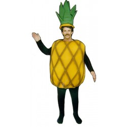 Pineapple  Mascot Costume (Bodysuit not included) PP23-Z