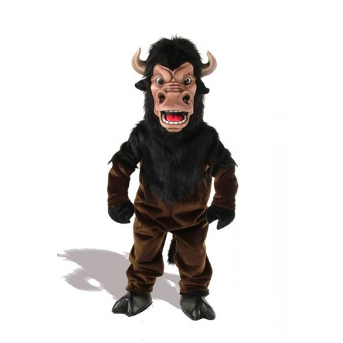mascot costumes for sales